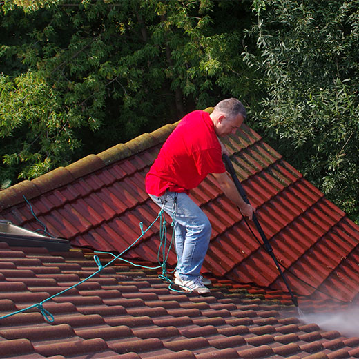 roof cleaning biocide treatment